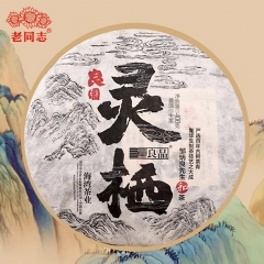 "2020 Haiwan ""The Gathering of Plant Spirit"" Raw Puer Excellent Tea Series ""Ling Qi"" Premium Raw Puer 400g"